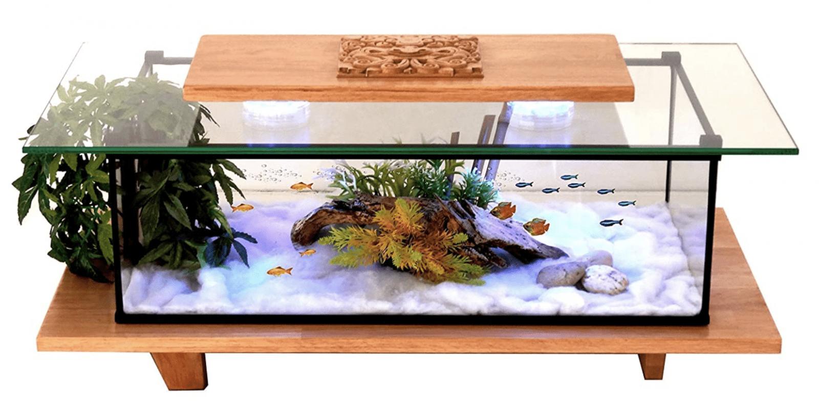 Table Basse Aquarium Classement Guide Achat Avis Jolichezvous Com